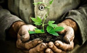 promotion développement durable