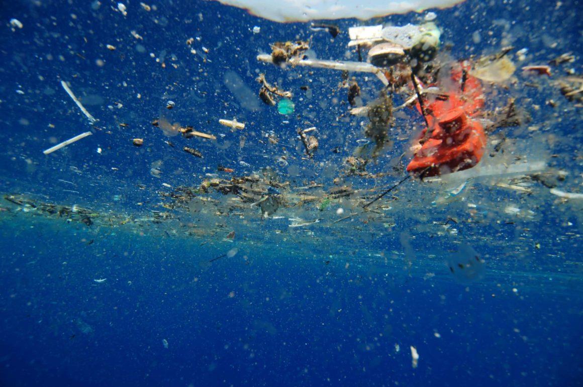 Les eurodéputés se prononcent sur l'interdiction d'objets en plastique jetables