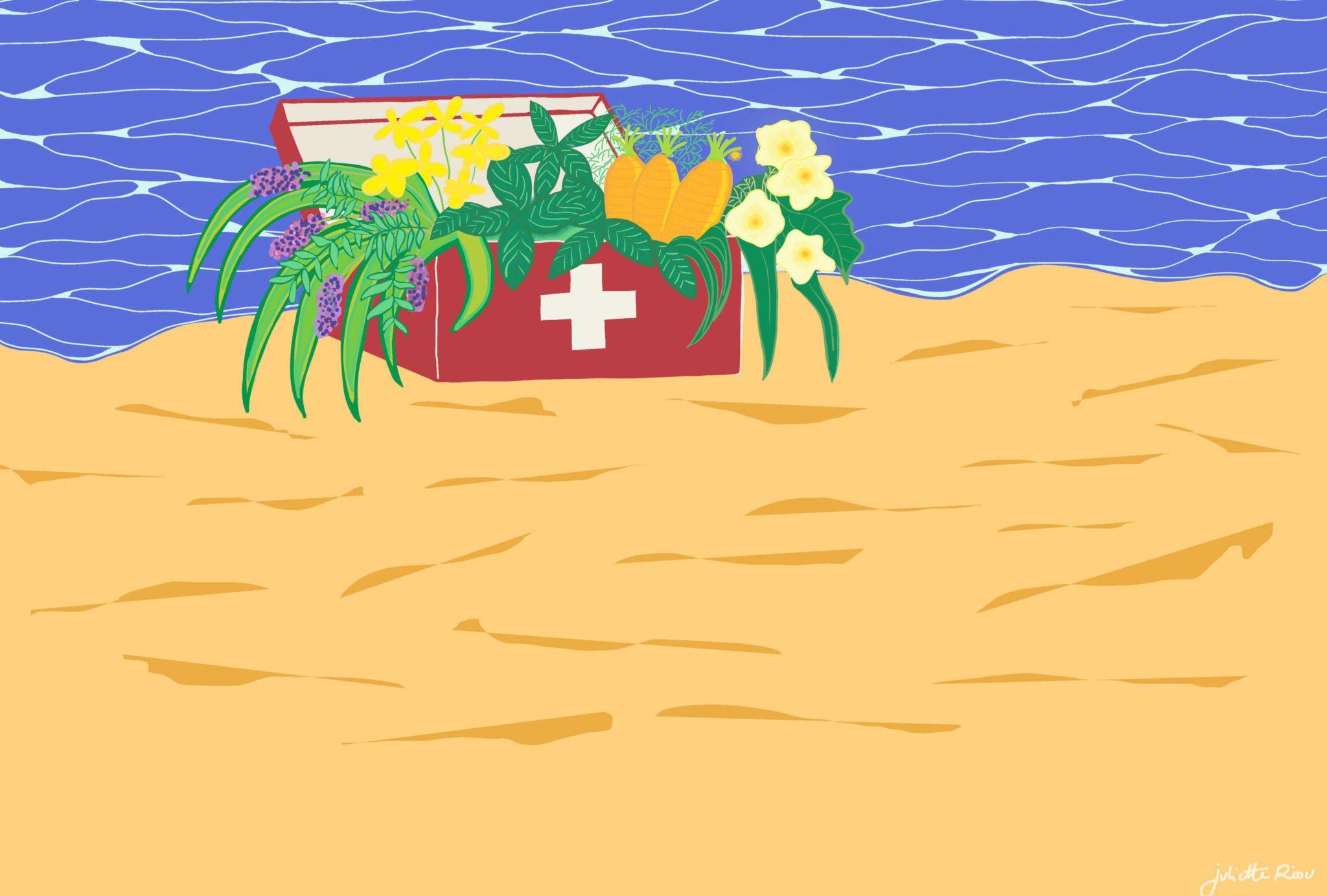 illustration d'une belle trousse à pharmacie de Juliette Riou